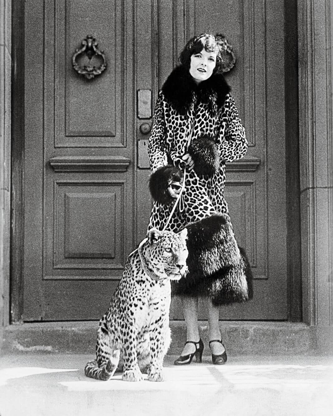 petite histoire de l'imprimé léopard
